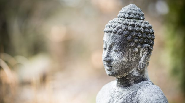 Der Kurs Buddhanatur: Das grundlegende Gute